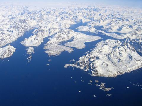 groenlandia-focas.jpg